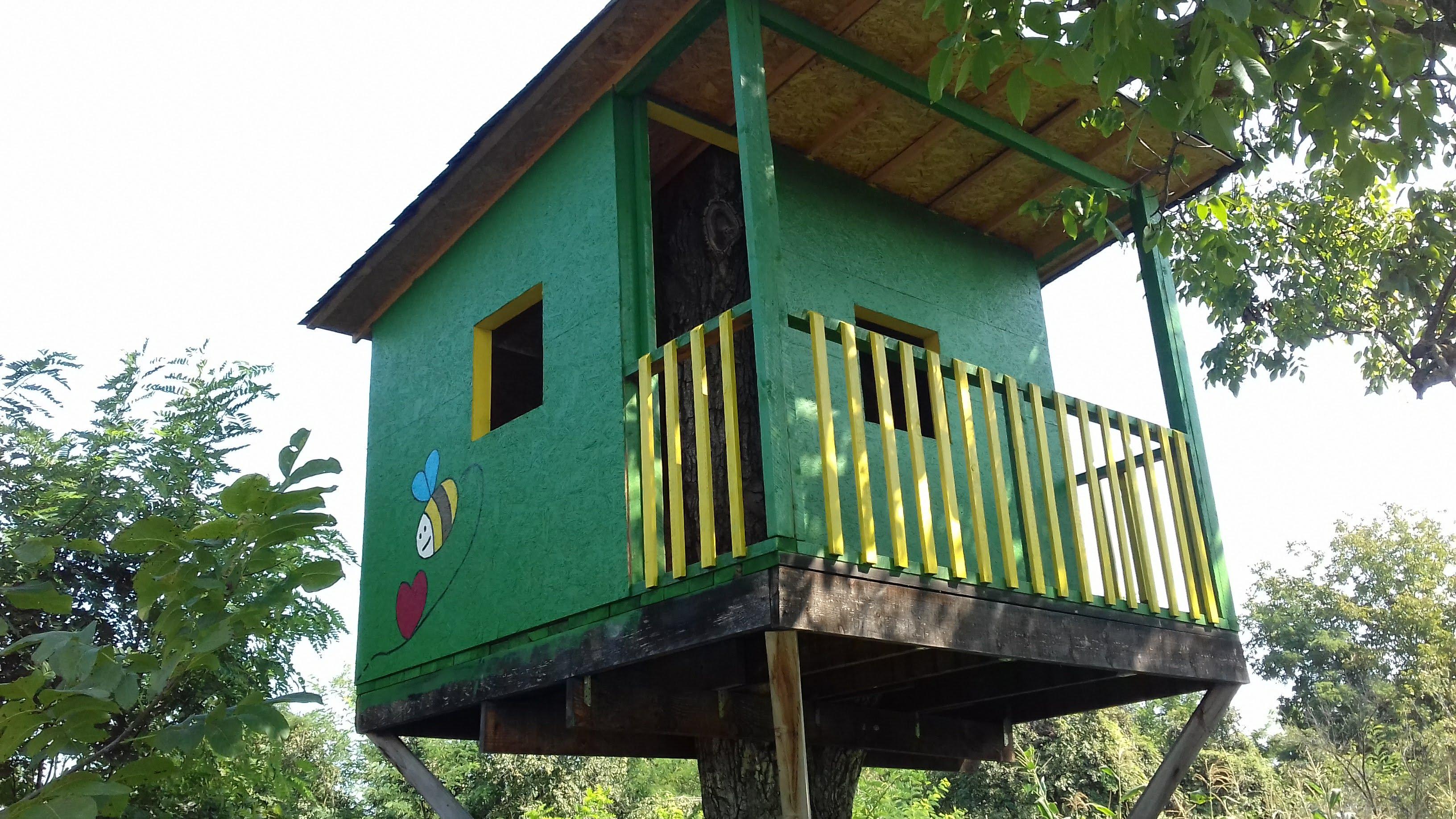 Casa din copac sau Apicultura la inaltime