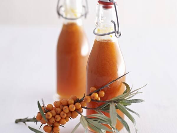 Sirop de catina cu miere si ghimbir Forte